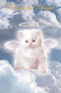Purr-fect Angel Poster