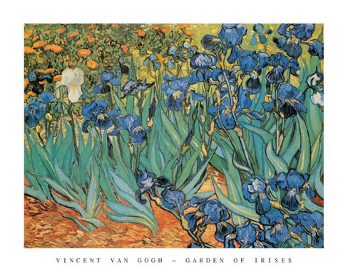 Van Gogh Garden of Irises Art Print Click Add to Cart to Order