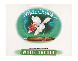 White Orchid Cigar Box Label Art Print Click Add to Cart to Order