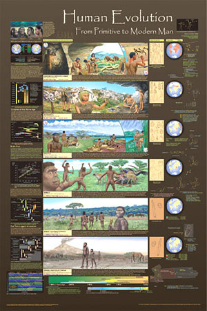Human-Evolution-Poster