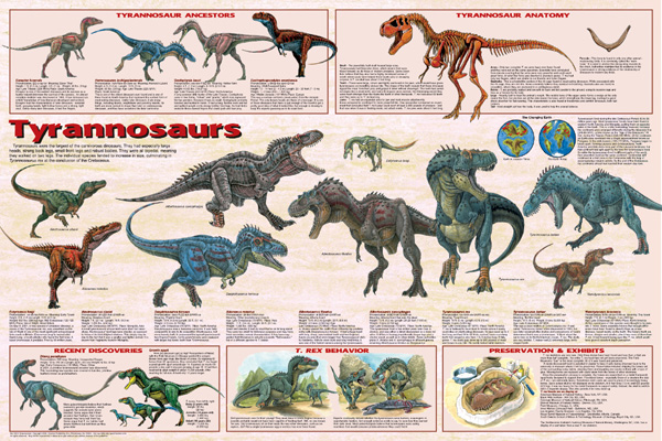 Tyrannosaurs Poster