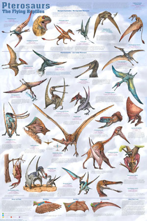 Pterosaurs-Poster