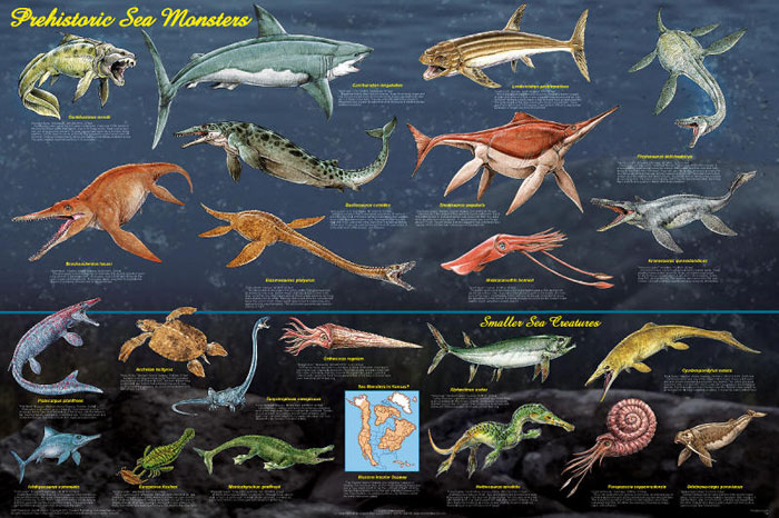 Giant Prehistoric Sea Creatures Prehistoric Sea Monsters