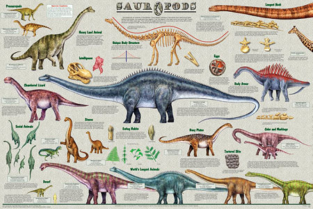 Sauropods-Poster