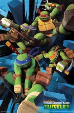 Teenage Mutant Ninja Turtles Turtle Power Poster Click to zoom in
