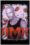 DMX Blacklight Poster
