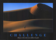 Challenge Desert Motivational Poster