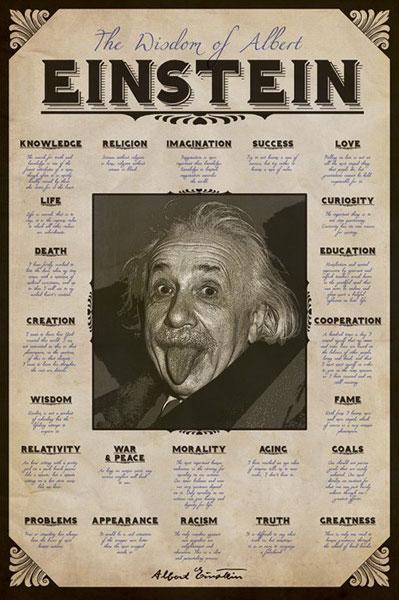 The-Wisdom-of-Albert-Einstein-Poster