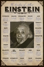 The Wisdom of Albert Einstein Poster