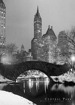 New York Central Park Winter Poster